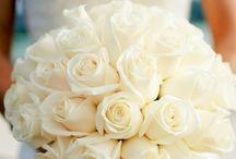 Luxury Flowers / Romantic, elegant, beautiful flowers