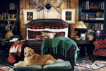 Decorating loves  / by Robin Clayton