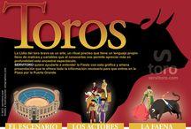 ¿Qué es una Corrida de toros? / Conoce a fondo el ritual de los Toros. ¿Qué son? ¿Que esconden? Entiende la cultura de España, descubre un espectáculo único en el mundo.