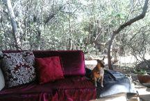 Bohemian Country  Living / Boho earthy decor