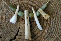 kości rogi