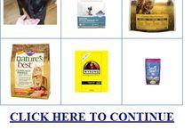 dry cat food review