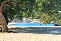 Holguin Cuba / Très beau voyage à Cuba! Magnifique plage de sable blanc aux eaux turquoises  Très beau et grand site de 900 chambres. Excursion : Catamaran à voile avec diner aux fruits de mer , Excellent !!!