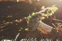 Amore / Reflexões de amor e paixão expressas em imagens e palavras.