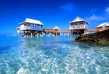 Travel: Bermuda