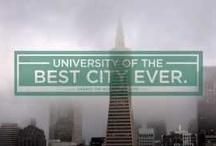 The City / San Francisco / by Sally Plahn Meeks