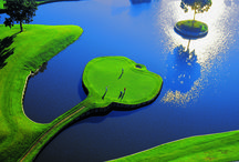 Florida: Golf Capital of the World / With more golf courses than any other state in the country, no wonder Florida is known as the Golf Capital of the World. http://www.VISITFLORIDA.com/Golf