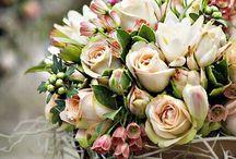 Bloemen en arrangementen