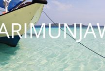 Karimunjawa - Indonesia - Bedforest / Karimunjawa is nothing but a beauty incarnate comprising all the best features you can get from any tropical islands. Perfect place for snorkeling and diving with the turtles.  Make sure you include Karimunjawa in your itinerary when you're travelling Java, a small detour off the main cities.  Accommodation in Karimunjawa available on Bedforest.com