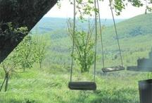 Fattoria la Maliosa Blog / The story of the farm through people, products and experiences #www.fattorialamaliosa.it #maremma #tuscany #organicwine #biodynamicfarm #biodynamic #organicfarm #naturalwine #organicwine #organicoliveoil #biodynamicoliveoil #demeter #antonellamanuli #manuli