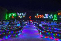 Christmas Lights Spectacular at Hunter Valley Gardens / See some great photo from our biggest event of the year; Hunter Valley Gardens Christmas Lights Spectacular. Bring your family out for this great tradition!!