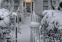 Winter ⛄
