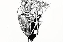 Anatomy and cardio-ish