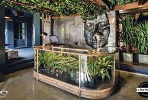 Guest House decor