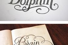 Typefaces & calligraphy