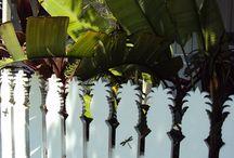 Key West Decor
