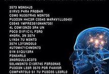 Mind /