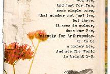 včely říkadla