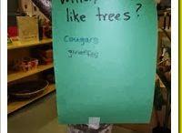 Trees / Exploration of tree types, leaves, environmental impact, animals, habitats, etc