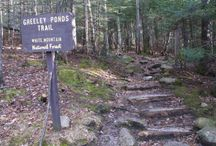 Top NH Mountains To Hike / Grappone Automotive Group's CEO Larry Haynes is an avid hiker. Here are his top 9 hikes in the White Mountains