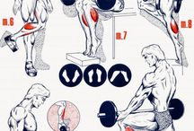 Building Calf Muscles