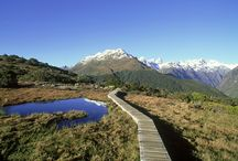 NZ hikes and holidays