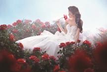 Disney Wedding Dresses  / Fairytale Wedding Dresses by Alfred Angelo