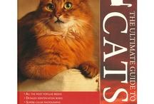 """""""CAT books"""" / by Monica Tamapua"""