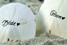 Caribbean Wedding / Caribbean Wedding - Honeymoon / by Caribbean Sunshine
