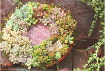 入賞作品 - 入選作品は月刊フローリスト12月特大号に掲載!!『フラワーリース』フォトコンテスト / http://greensnap.jp/contest/61