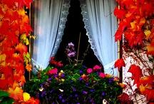 """""""JANELAS CHEIAS DE CHARME"""" / Decoração em janelas, flores, cortinas, lugares que passam aconchego."""