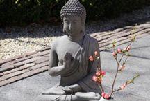 Bestrating in Sawa-sfeer / Hoe krijg je nu zo'n heerlijke oase in jouw tuin? Bekijk hier onze producten.
