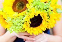 sunflower and blue wedding / by Karen Shelton