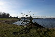 Photography Almere
