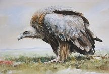 Art Painter Liu YOUNSHENG - watercolor