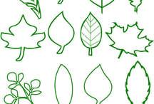 Moldes folhas