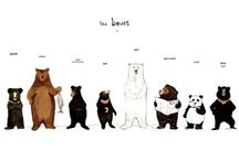 세상의 모든 곰들