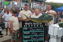 Fishing Charters, Marinas & Tournaments IN OCMD / Premier fishing charters, marinas and fishing tournaments in Ocean City, Maryland.