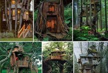 Treehouses / I always dreamed of living in a treehouse :)