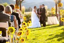 My Wedding <3 / by Patricia Allen
