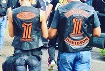 Harleysite #hd #harley #harleydavidson #harleyrider