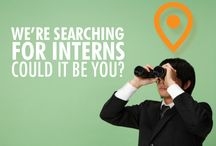 Travel Careers with Joe Walsh Tours / Searching for a career in Travel? Look no further!