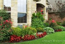 Landscaping / by Angie Read