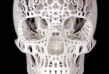 SKULL / by Cody Walton