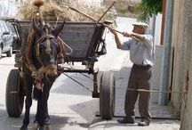 Portugal / Old Portugal... photos capturing the old way of life