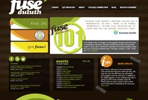Public Organizations Web Design / Website Design by Faster Solutions Inc. Duluth MN | Brainerd MN fastersolutions.com