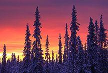 Lapland - Finnland