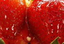 Tasty Strawberries / Red Strawberries that will open your heart