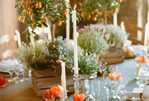 Theme: Citrus Inspired Wedding