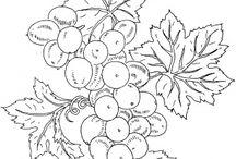 kisc winogron  i liści  w rysunku i robutkach irsh  crochet